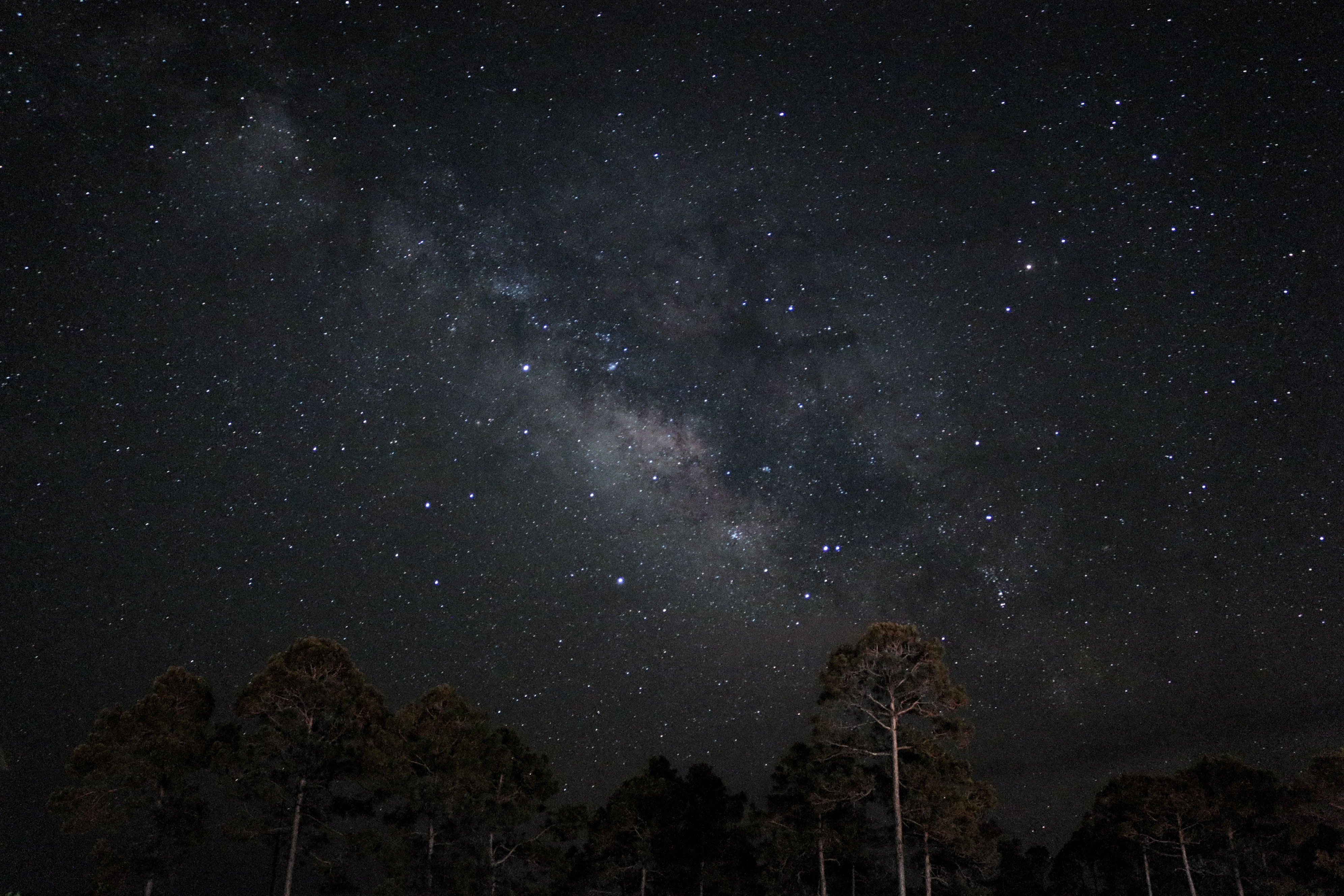 low angle photography of star at night time