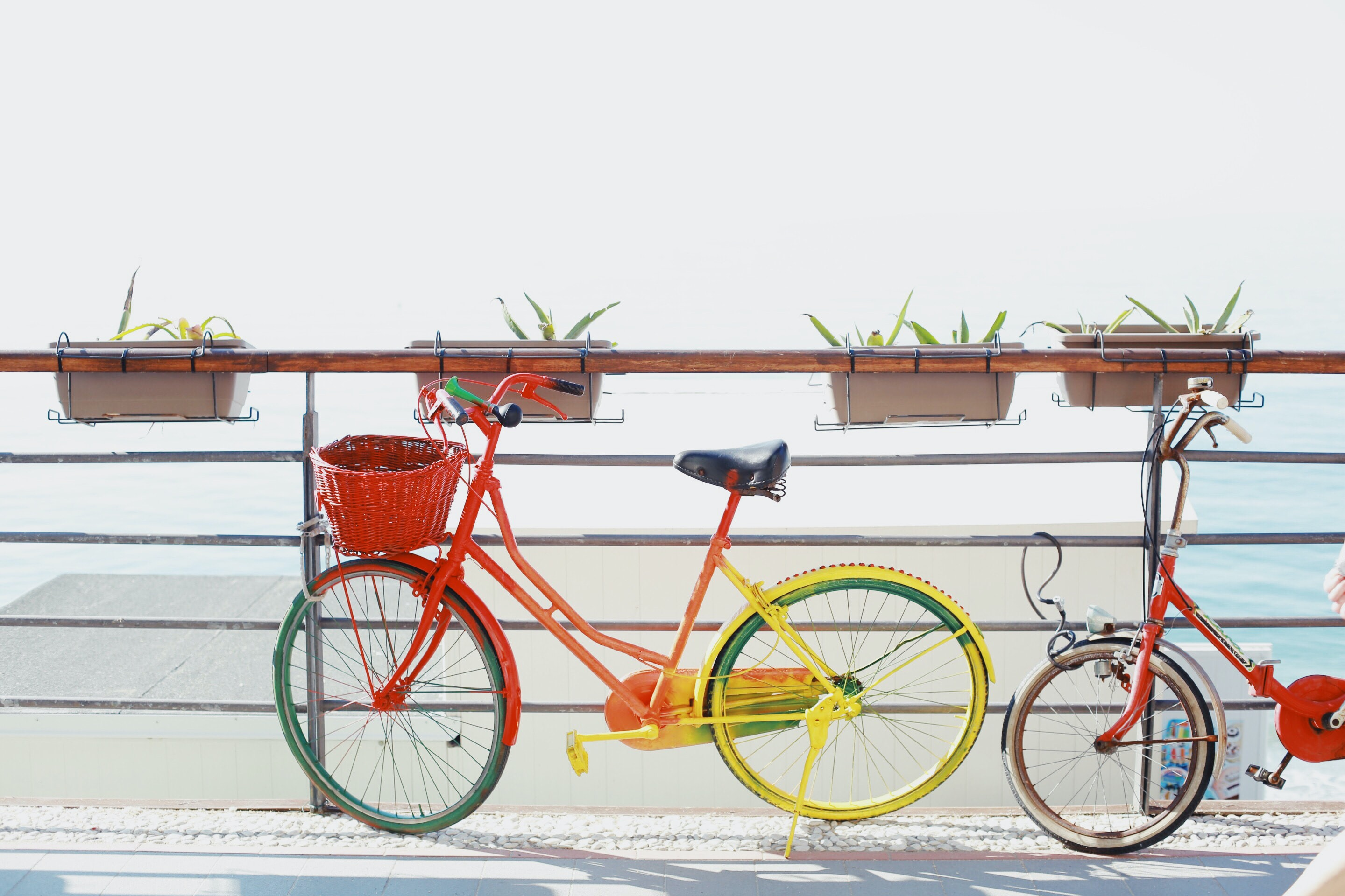 two red bicycles near railing