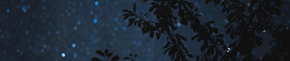 Ankr Reward-Bearing Staked ETH header image