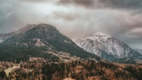 mountains with trees under cloudy skies