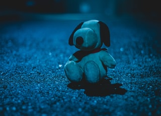 white dog plush toy on sandy ground at nighttime