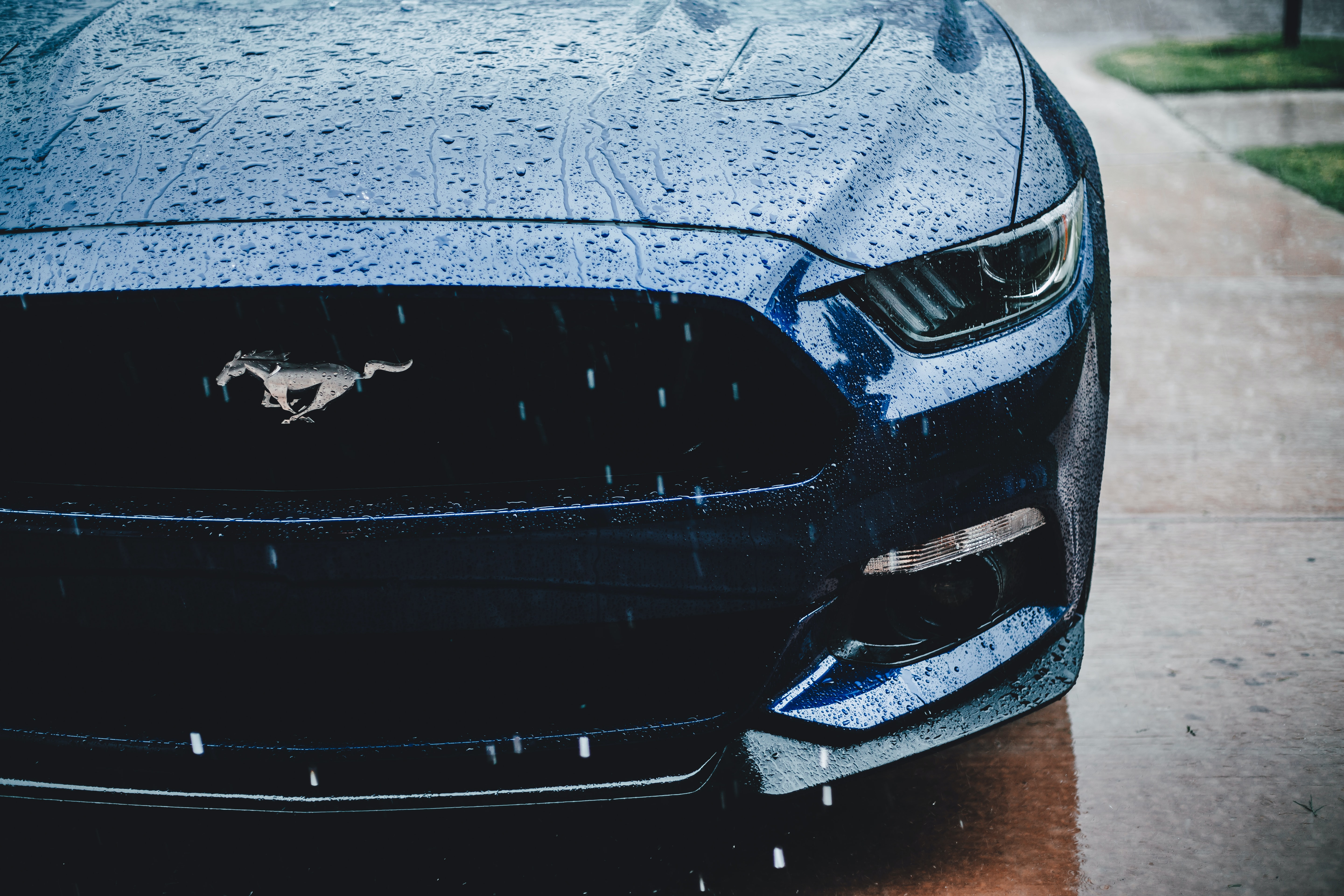 Mustang Pictures Hd Download Free Images On Unsplash