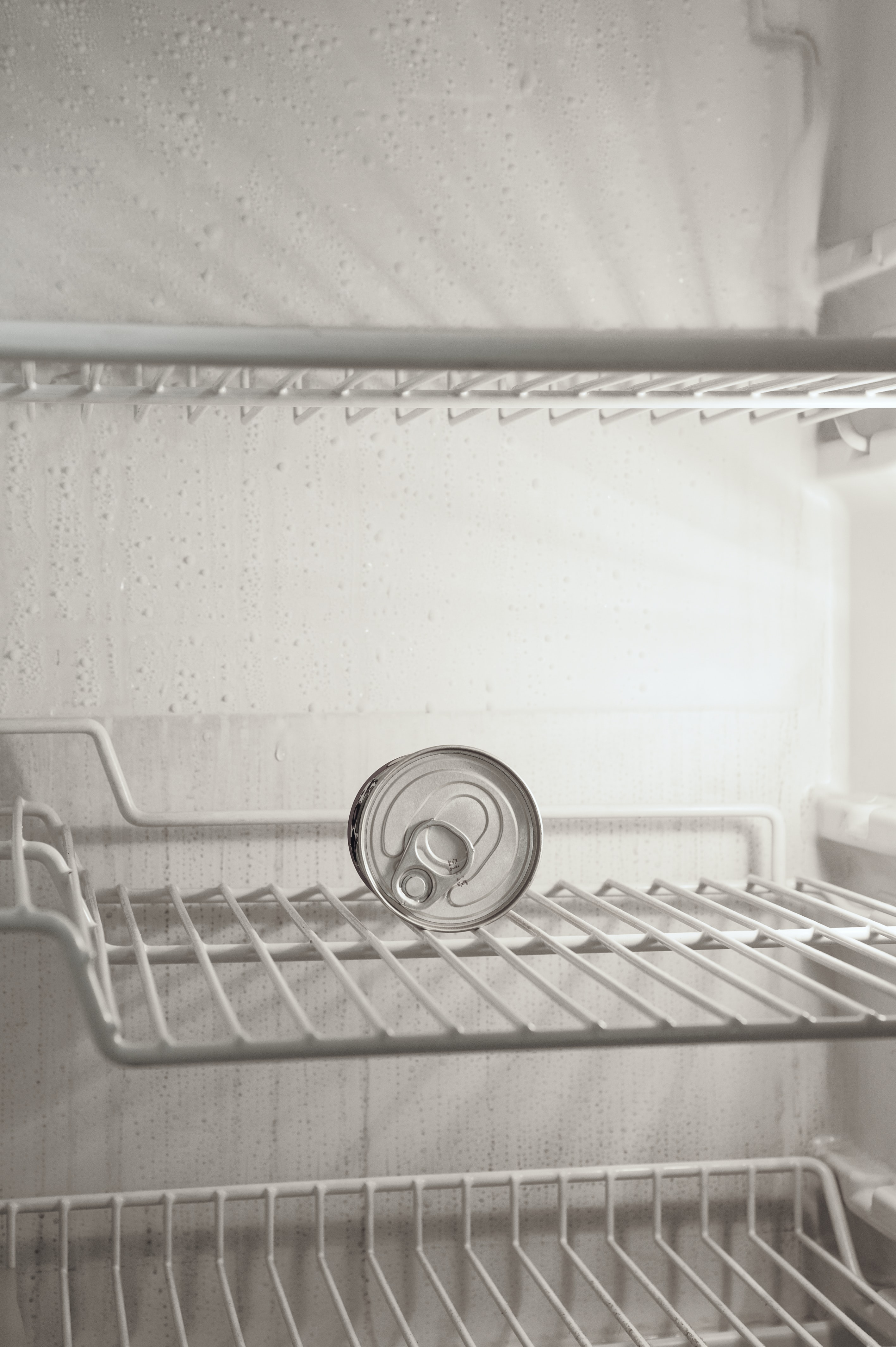 beverage can in refrigerato