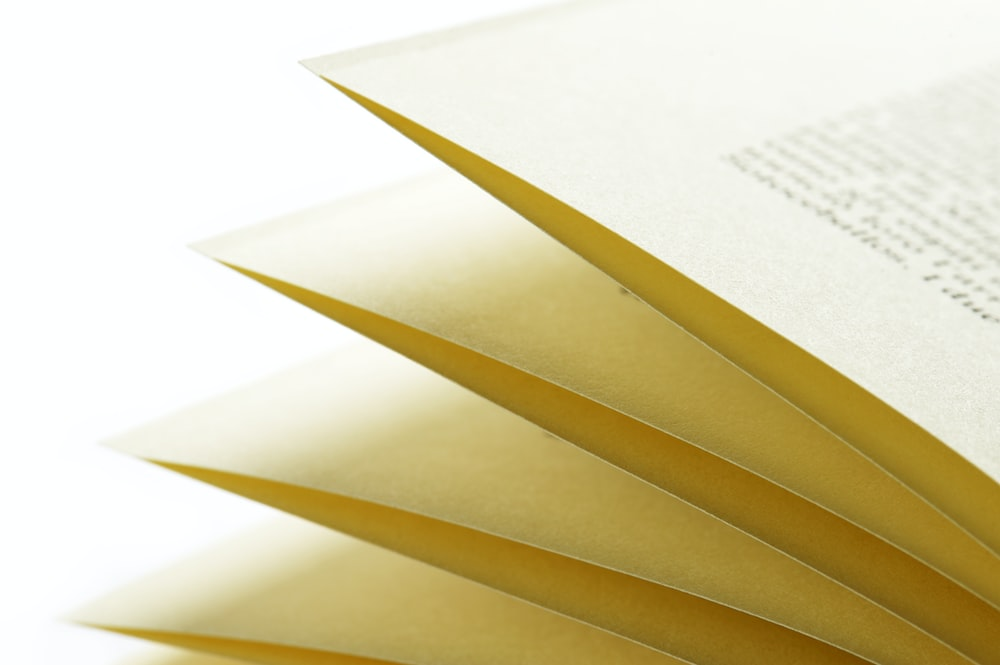 closeup photo of book pages