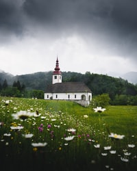 white and black cathedral surrounded by grass