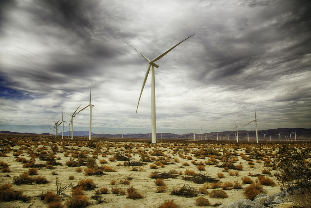 white wind mills