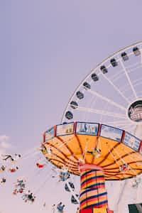 carnival life carnival stories