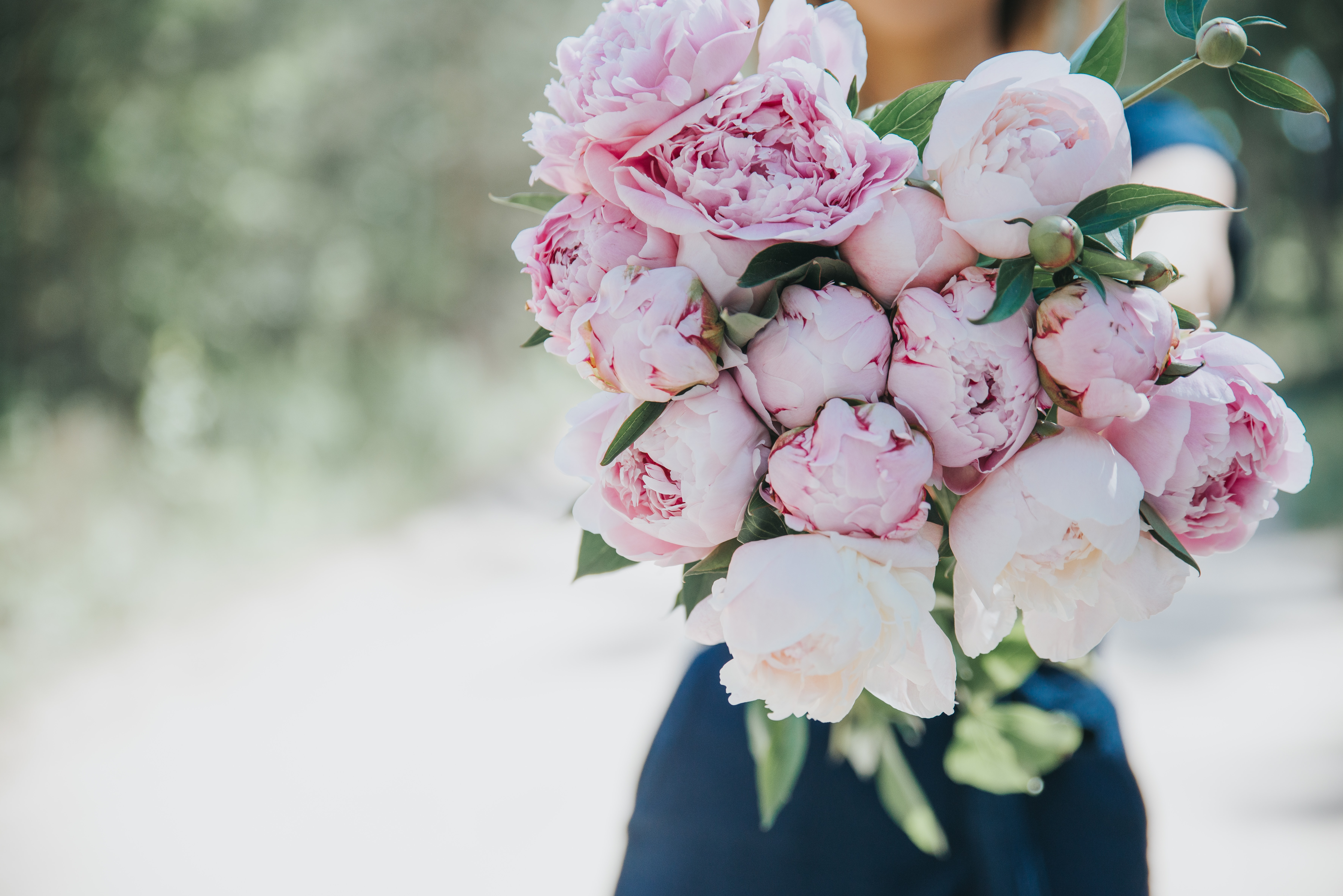 rule of thirds photography of pink-and-white flower bouquet