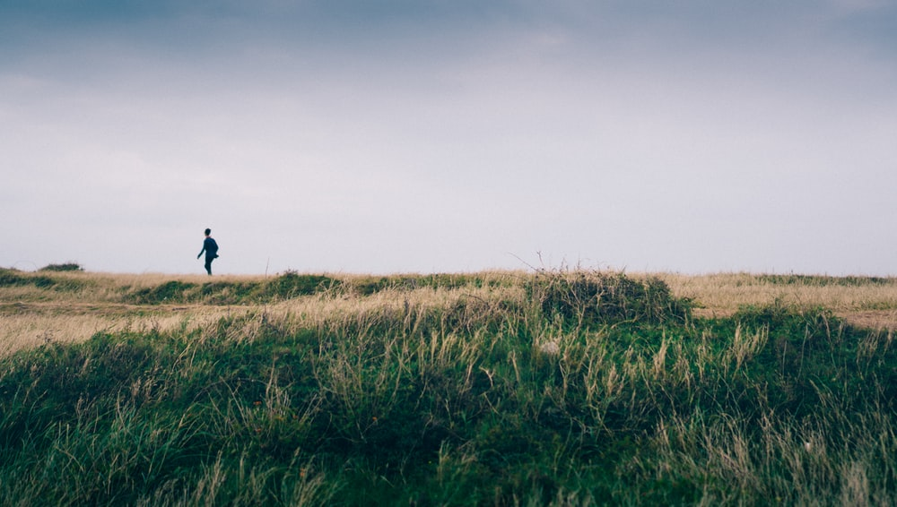 person walking on a grass plain during daytime