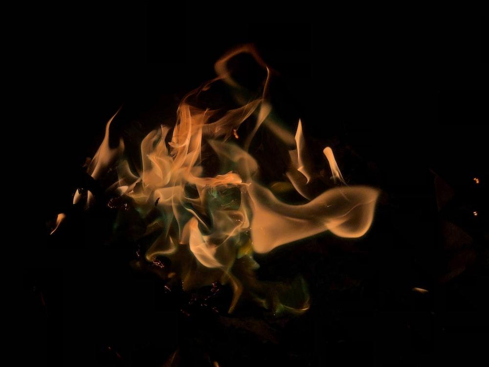 burning firewoods