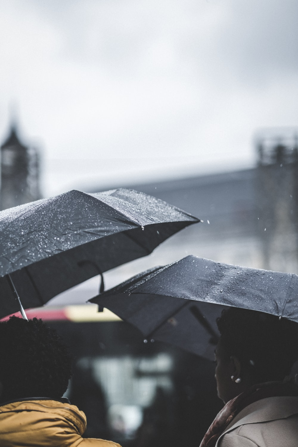 shallow focus photography of black umbrellas