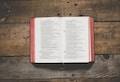 Ignatianische Schriftbetrachtung