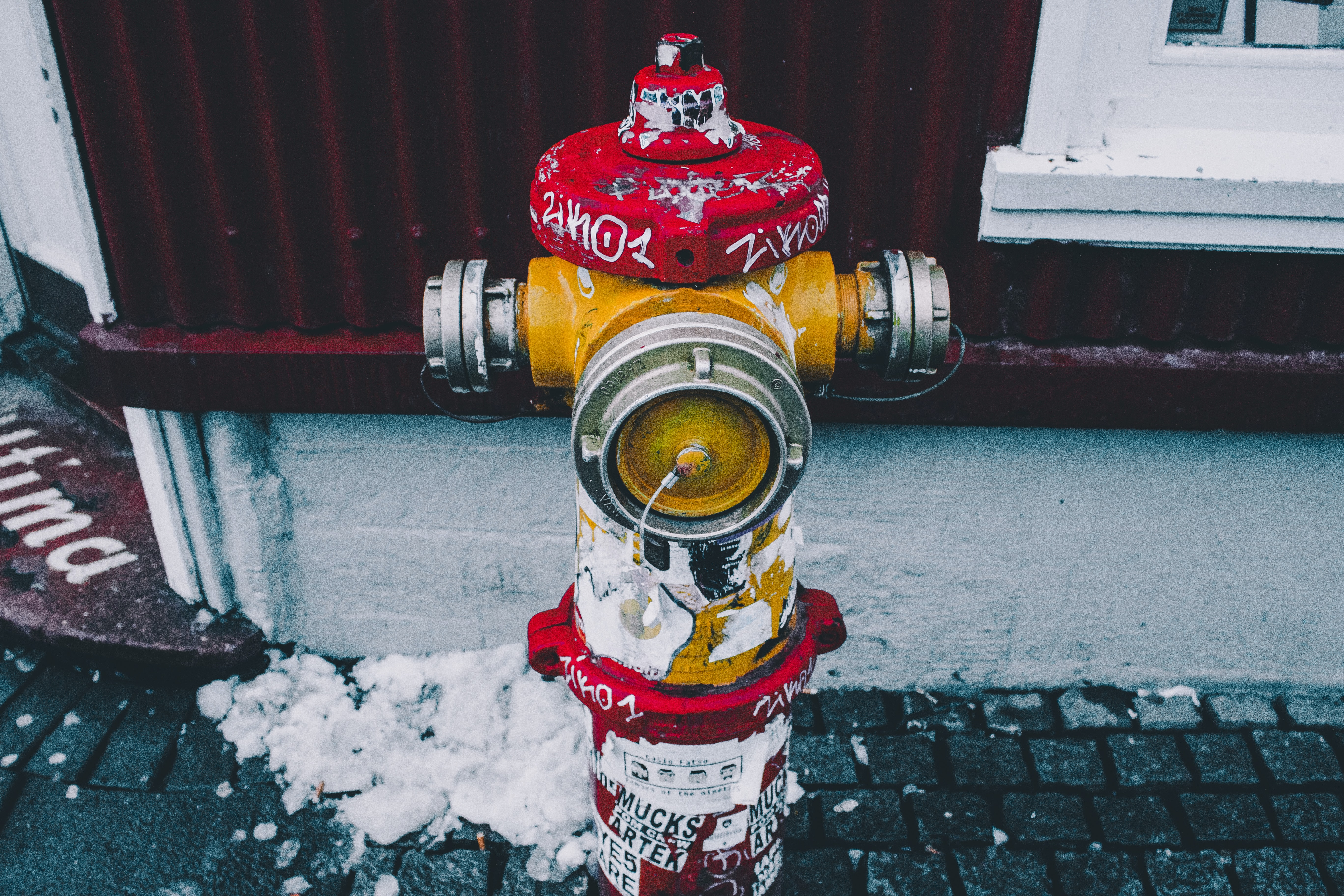shallow focus photography of yellow and red steel fire hydrant