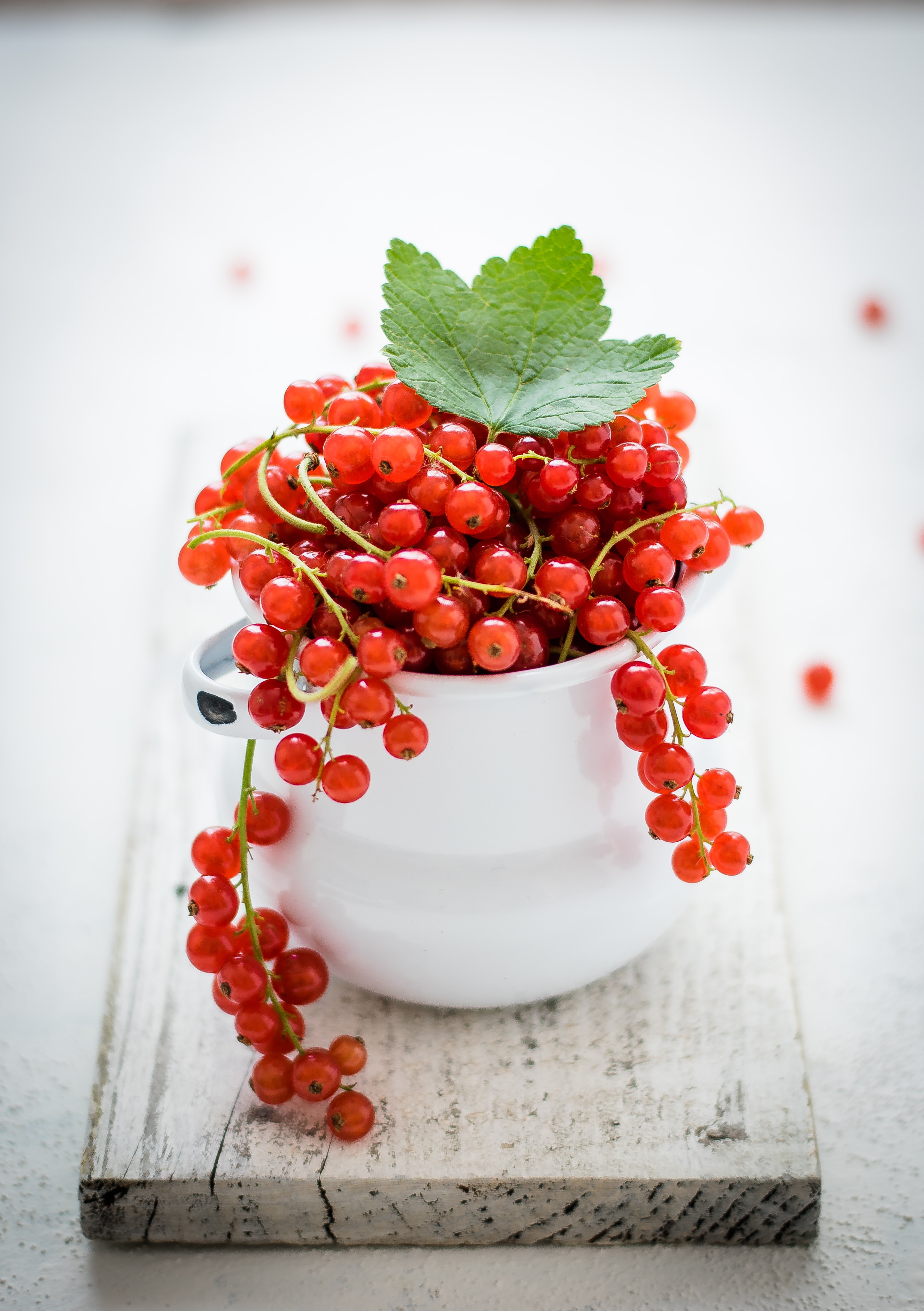 white ceramic bowl filled with red fruits