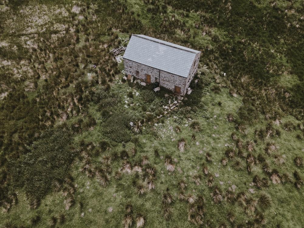 bird's eye view of house