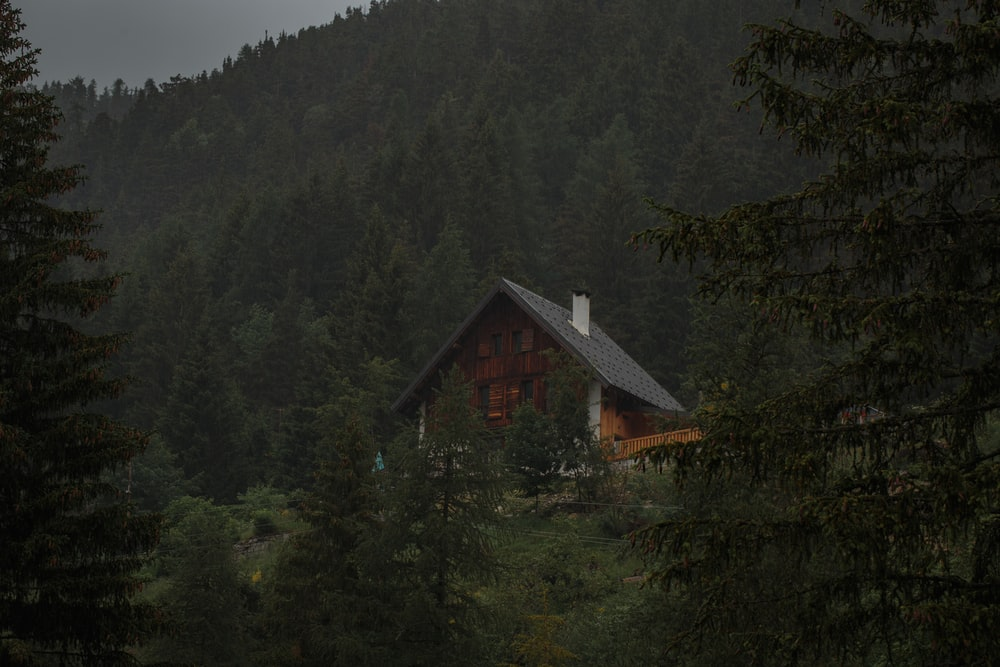Forest House Pictures Download Free Images Stock Photos On Unsplash