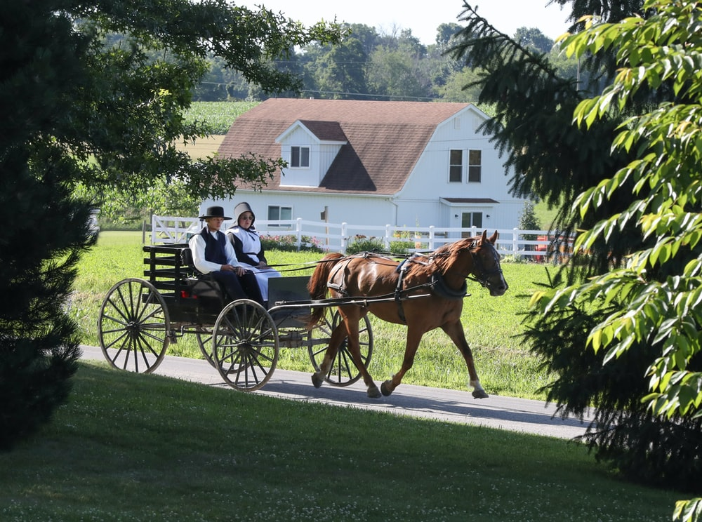 man and woman riding horse carriage