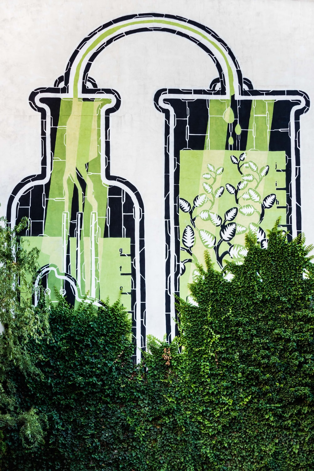 street art and green leafed plant