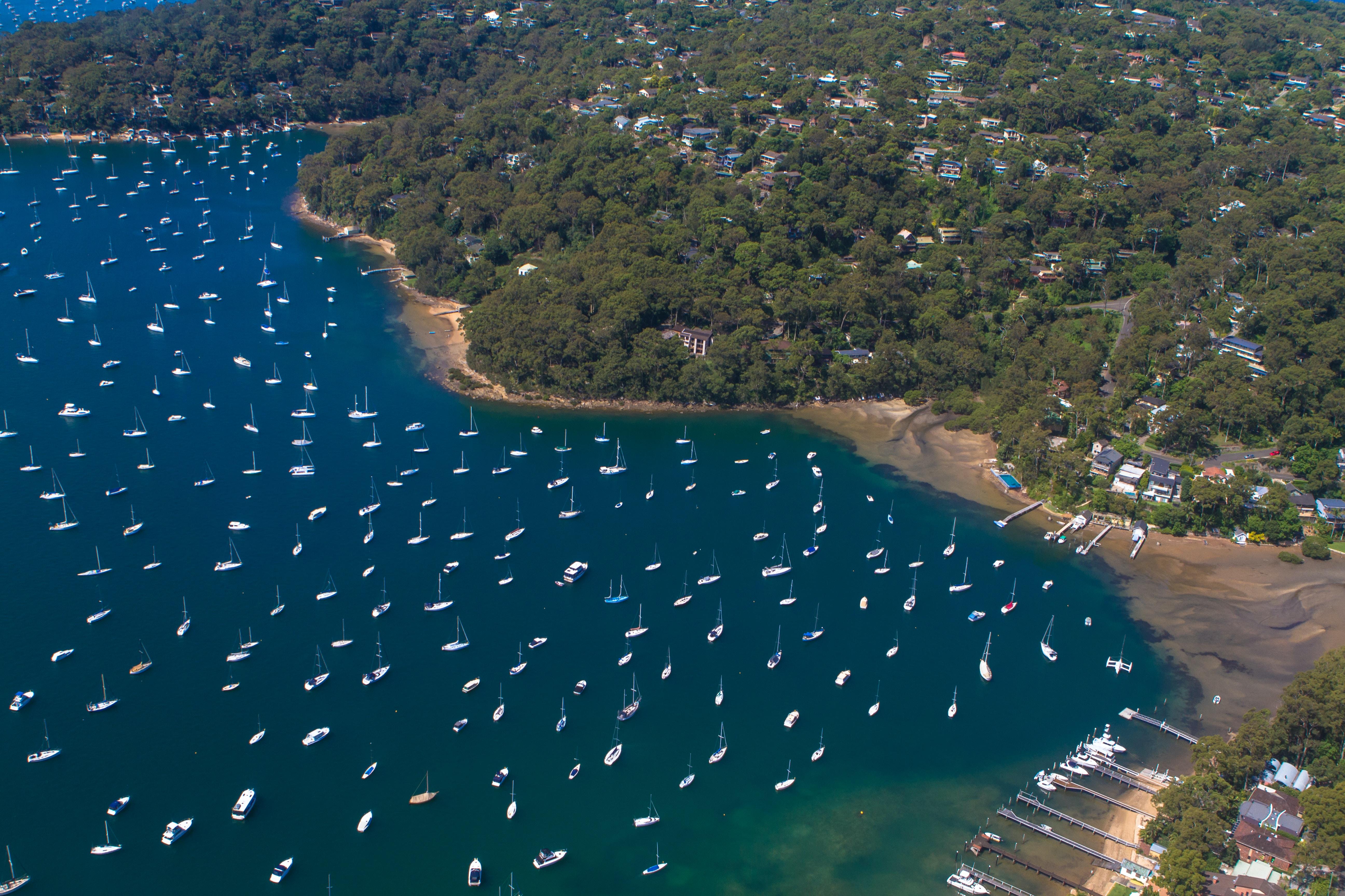 aerial photography of seashore near green grass trees