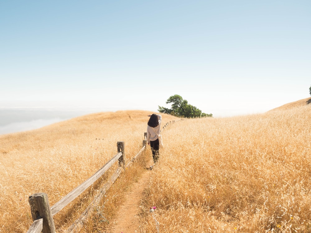woman walking beside brown grasses