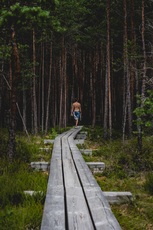 man walking on gray wooden pathway near trees