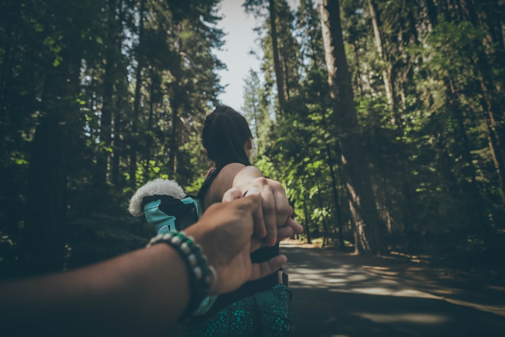 woman holding hand of a person while walking on road between trees