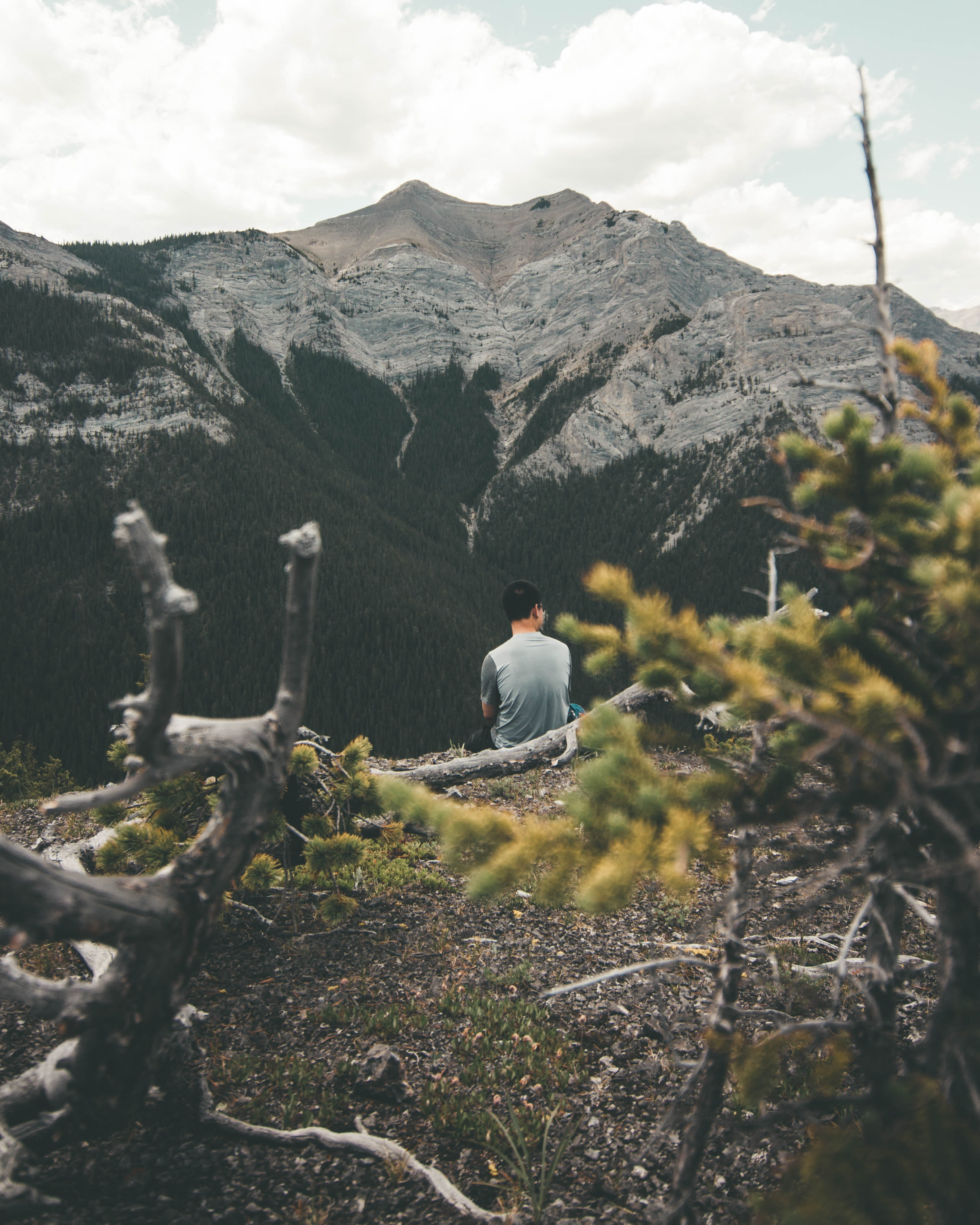 man sitting in front of mountain facing backwards
