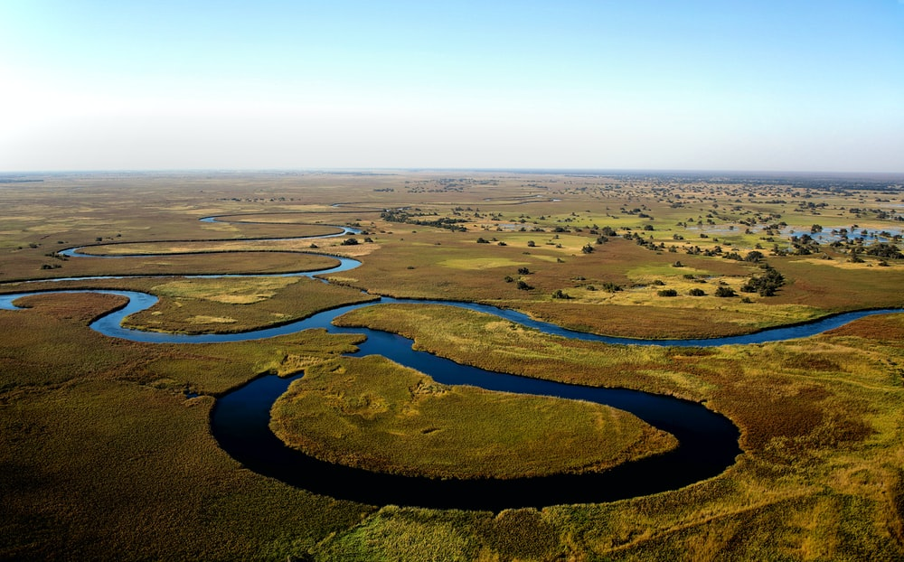 Riparian Ecosystem Aerial View