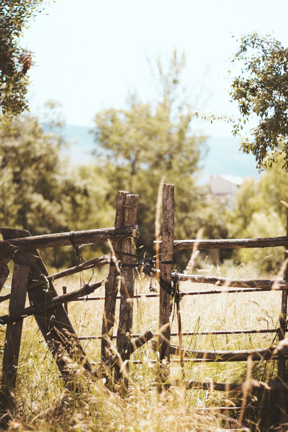 closeup photo of brown wooden gate closed