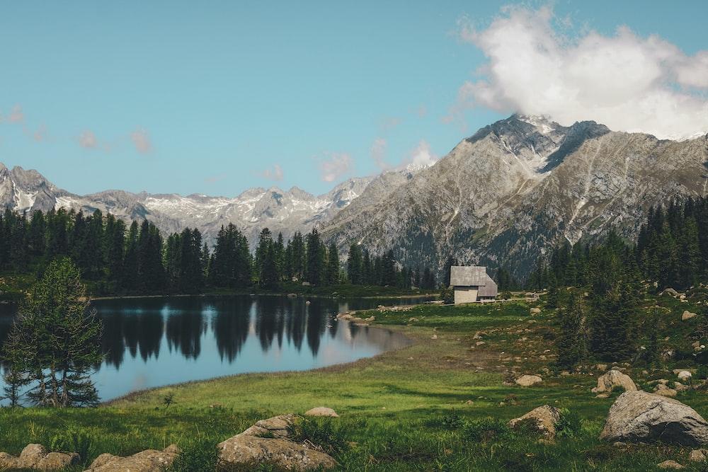 lake near trees across mountain