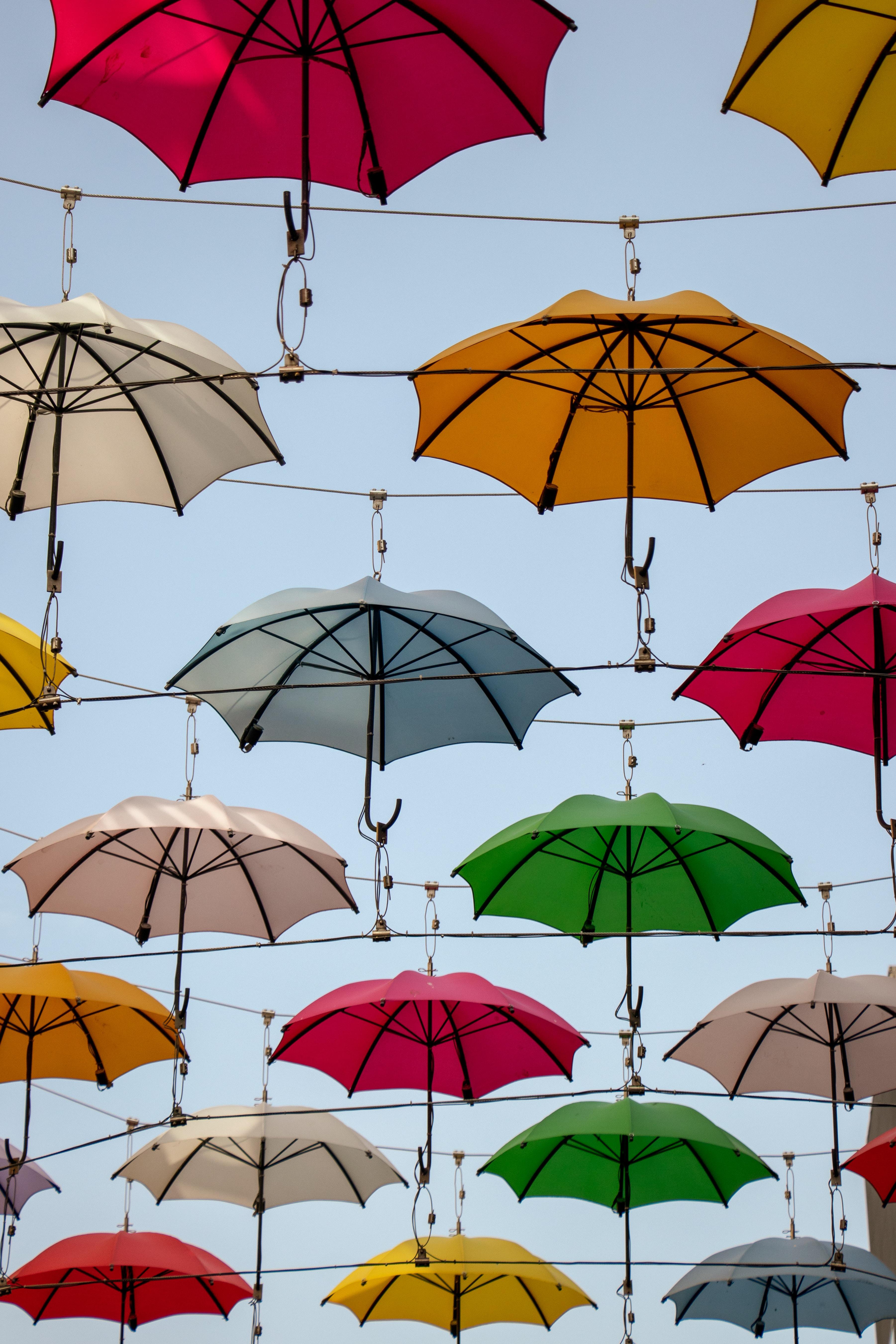 assorted-color umbrellas hanging