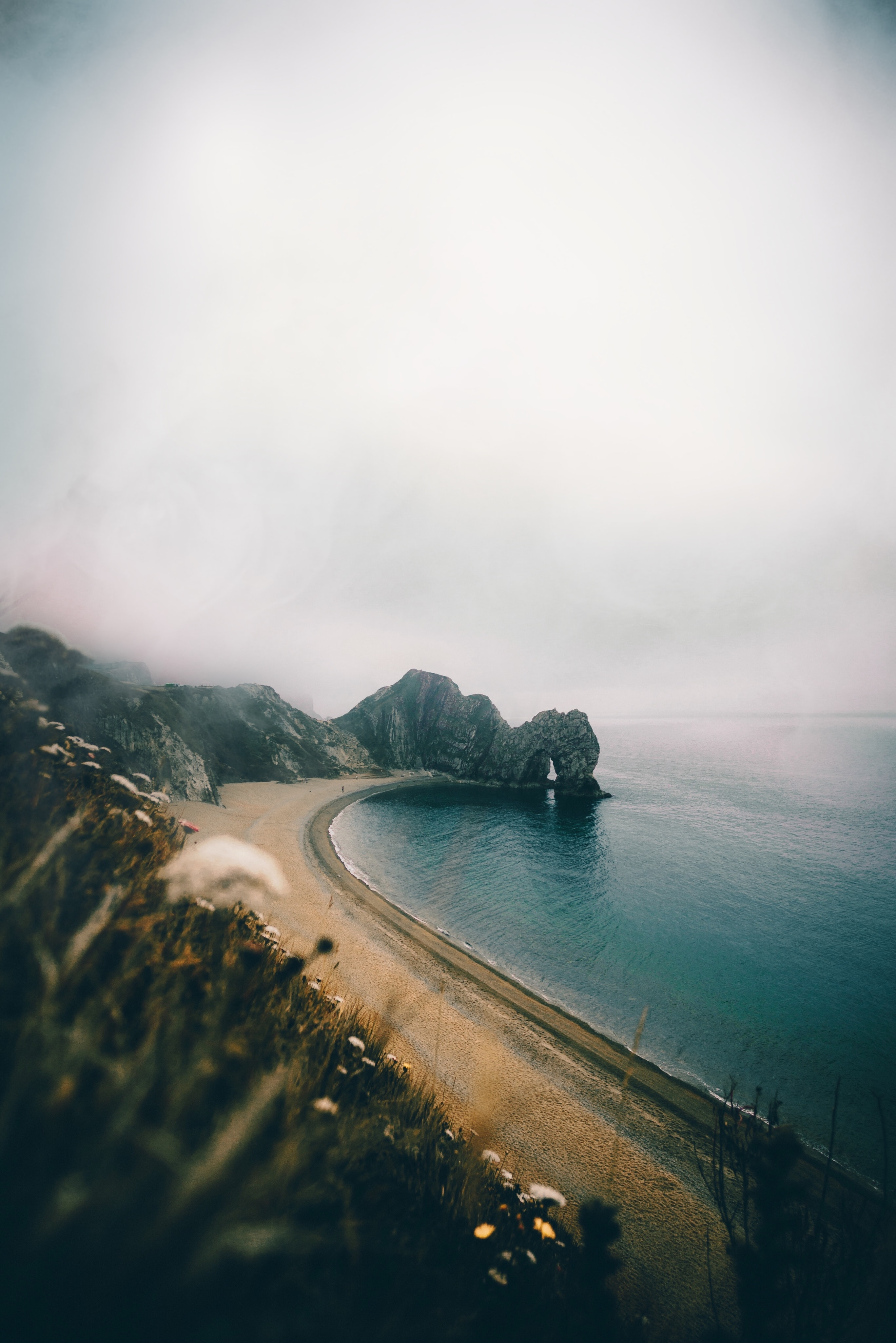 seashore under cloudy sky