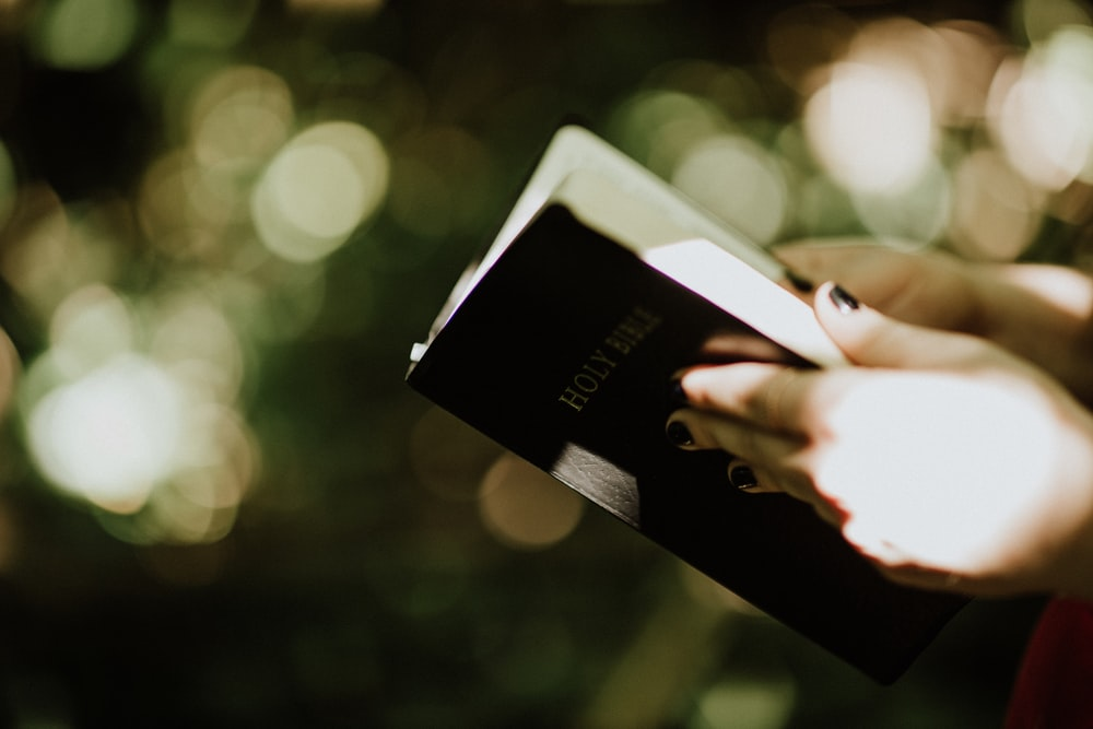 selective focus photography of person holding Holy Bible