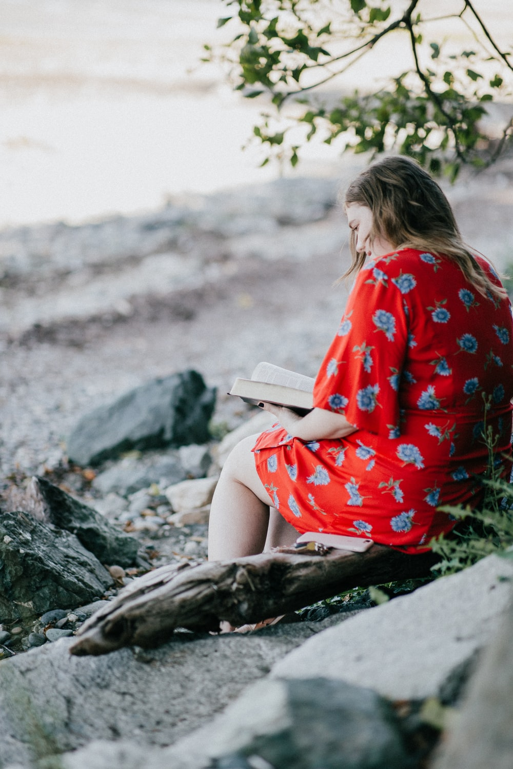 woman sitting on brown branch while reading book