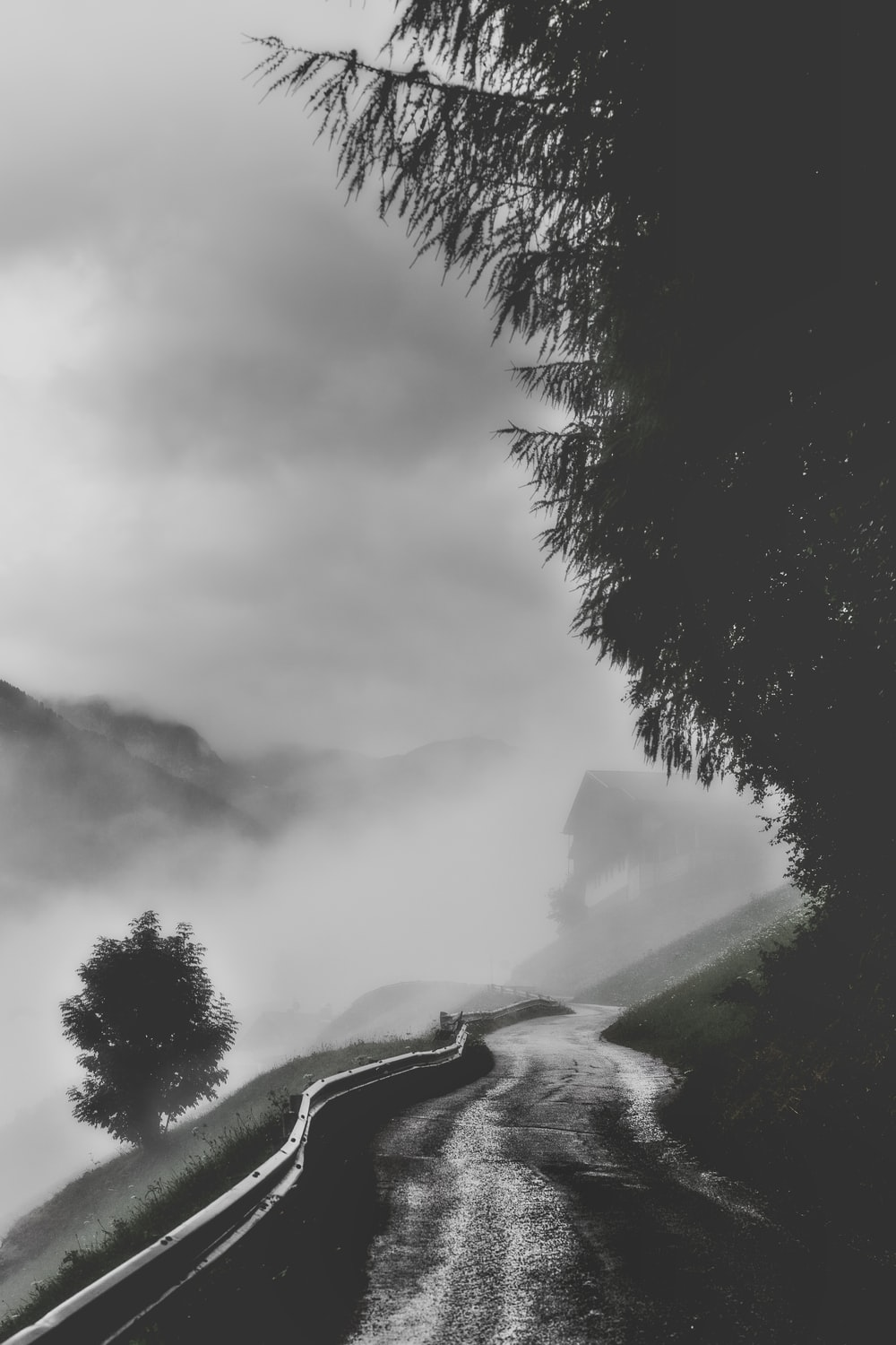 grayscale photography of road in forest