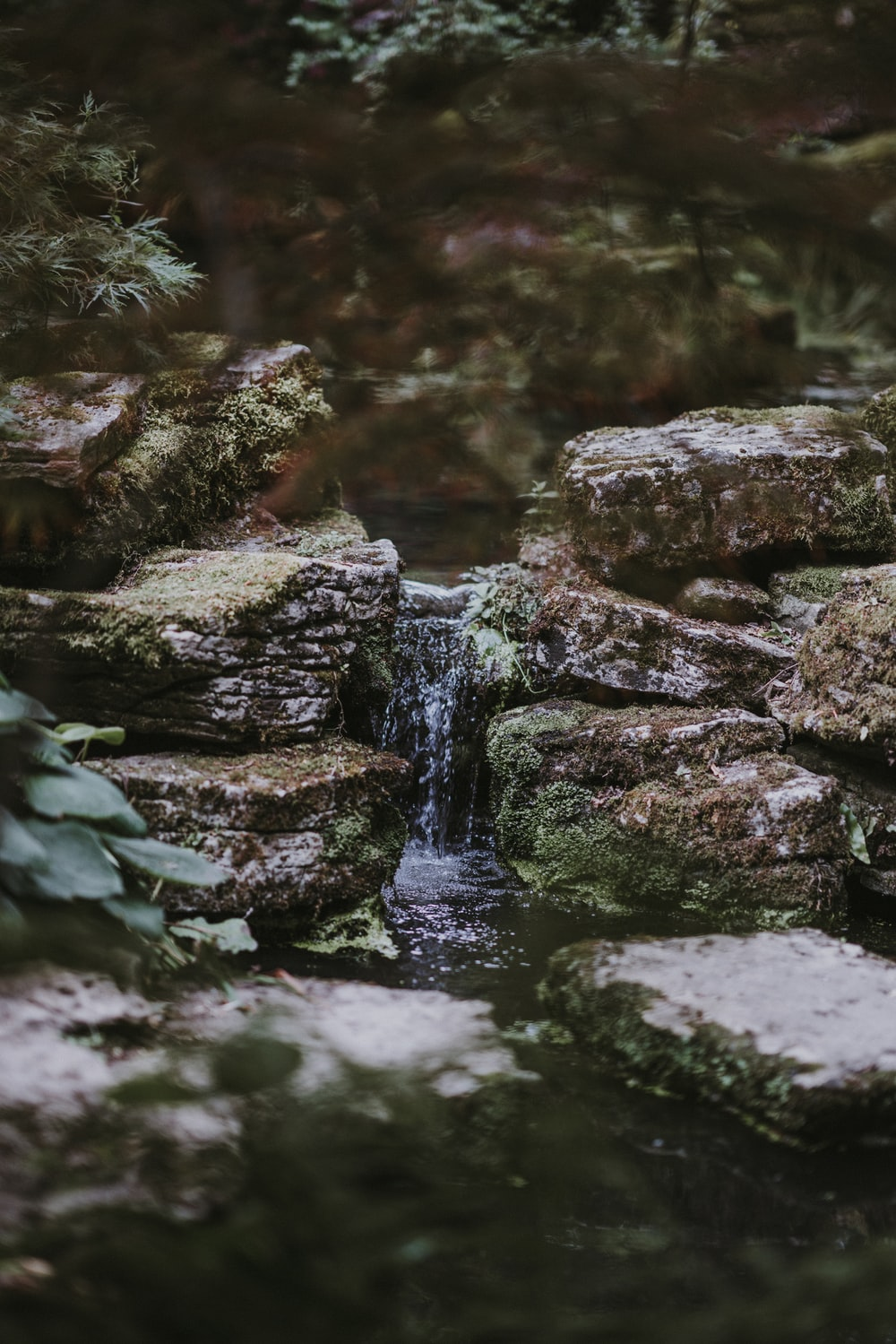 Stream flowing down rocks | HD photo by Annie Spratt