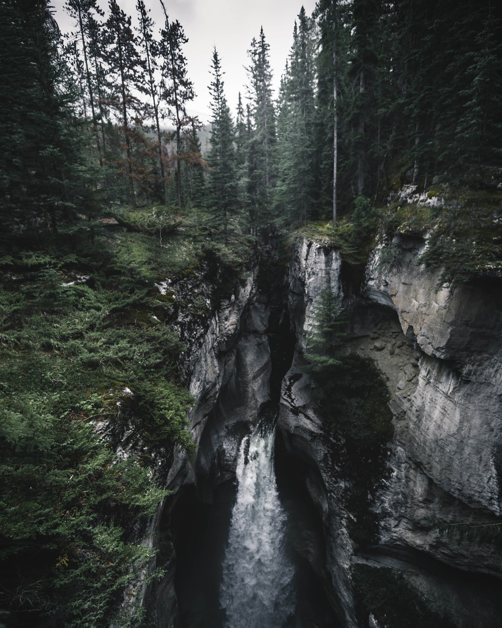 landscape photography of waterfalls near green trees