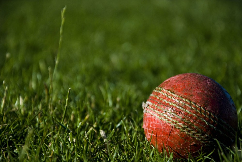 shallow focus photography of red cricket ball