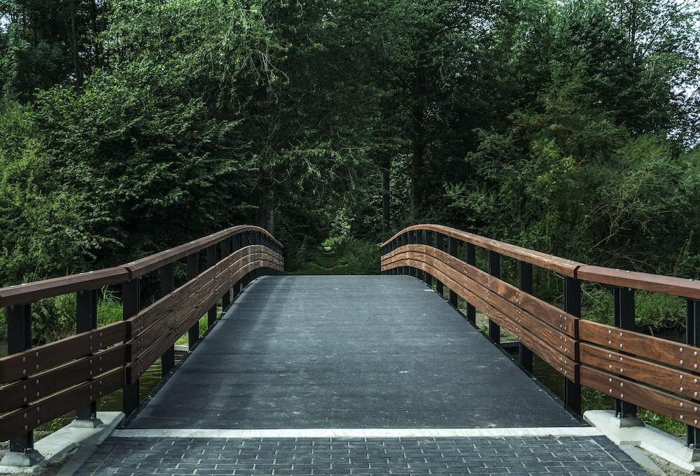brown and black bridge near trees