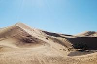 empty desert during daytime
