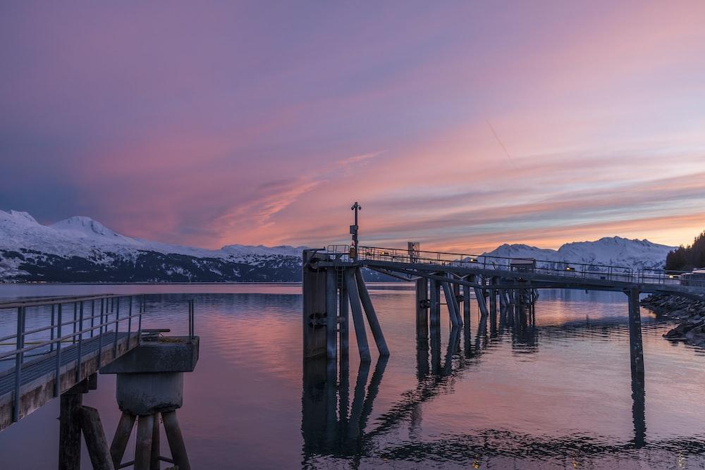gray suspension bridge on body of water