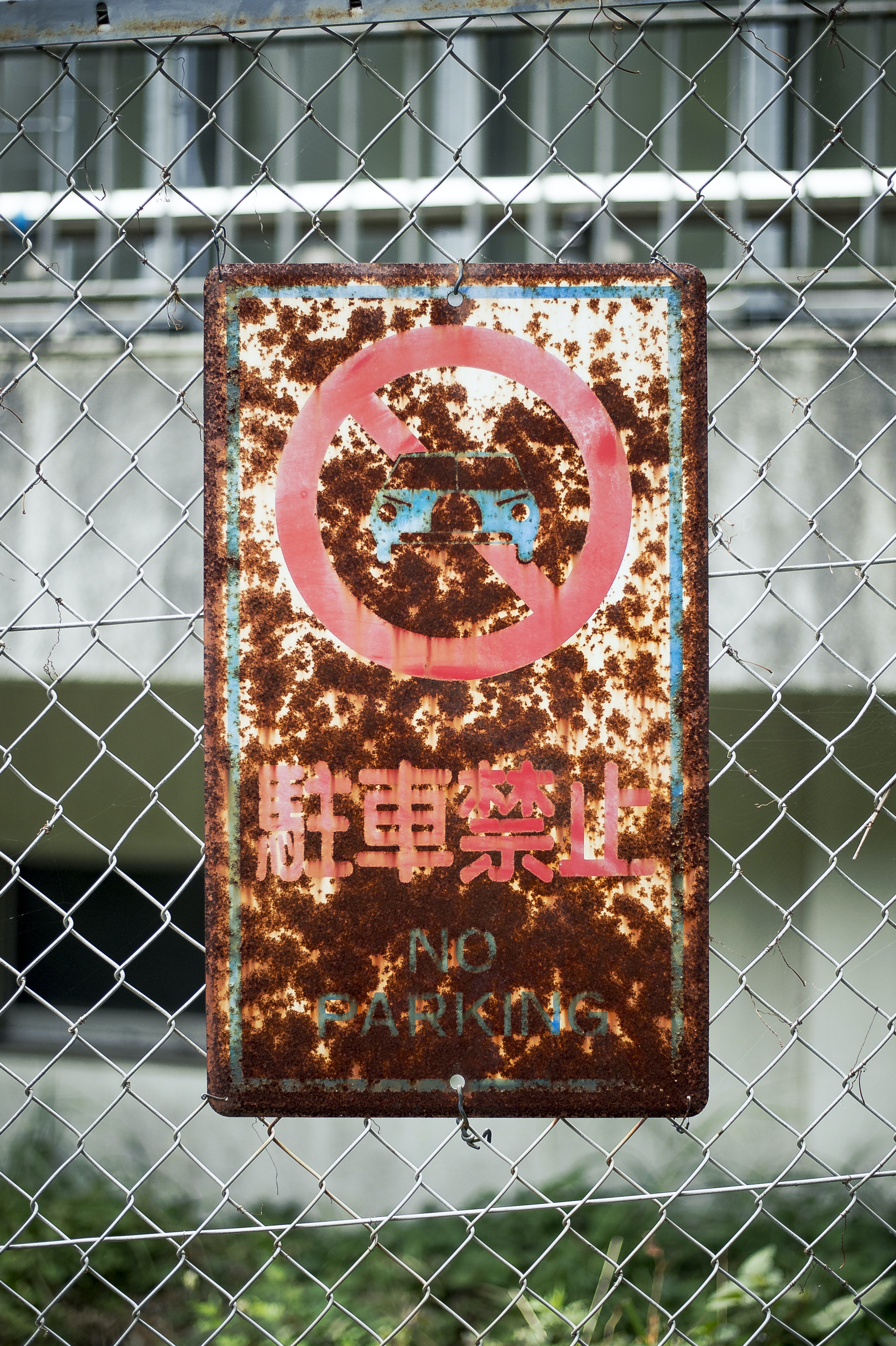 blue and white No Parking signage hanging on gray cyclone fence