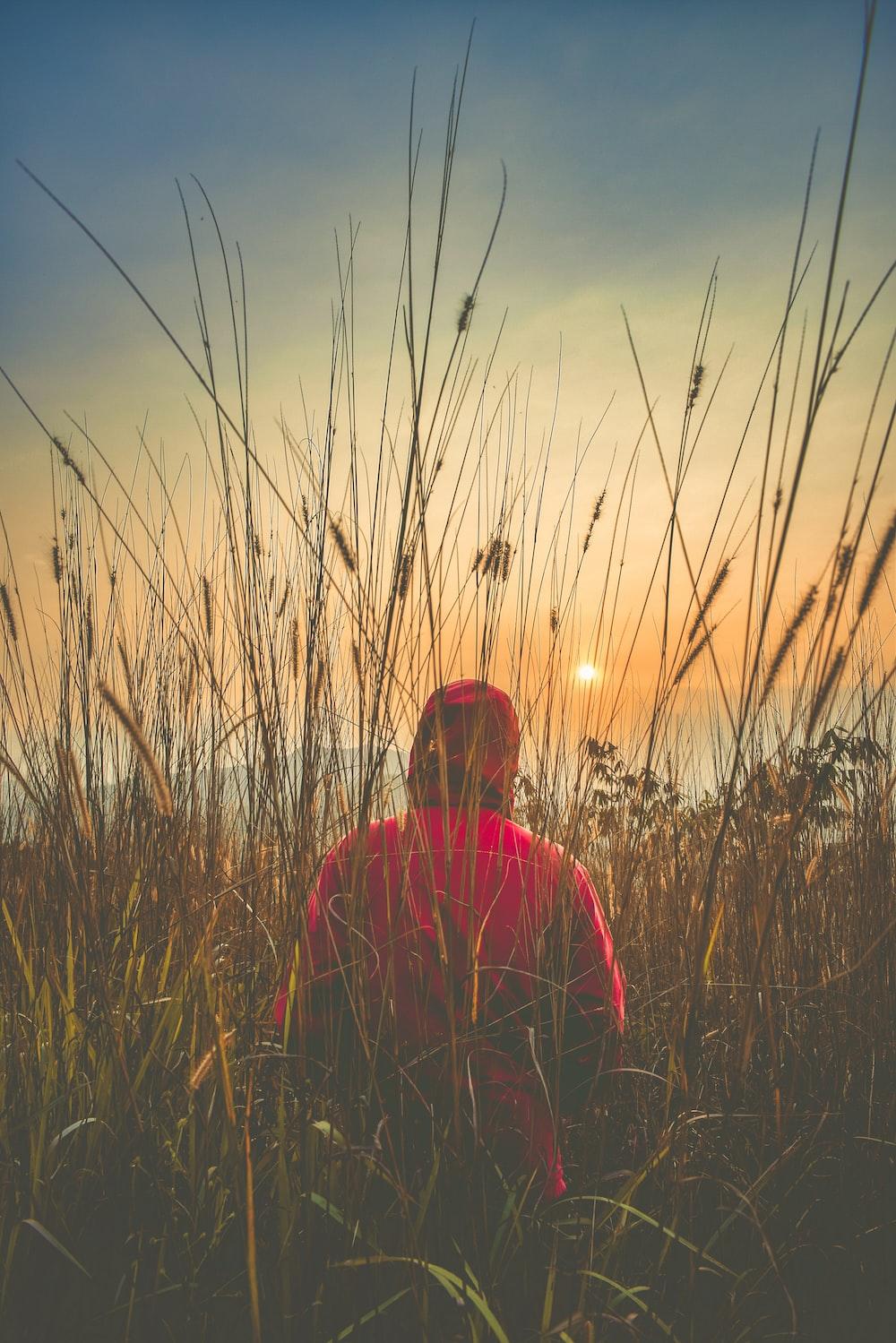 person in red hoodie walking in grass field