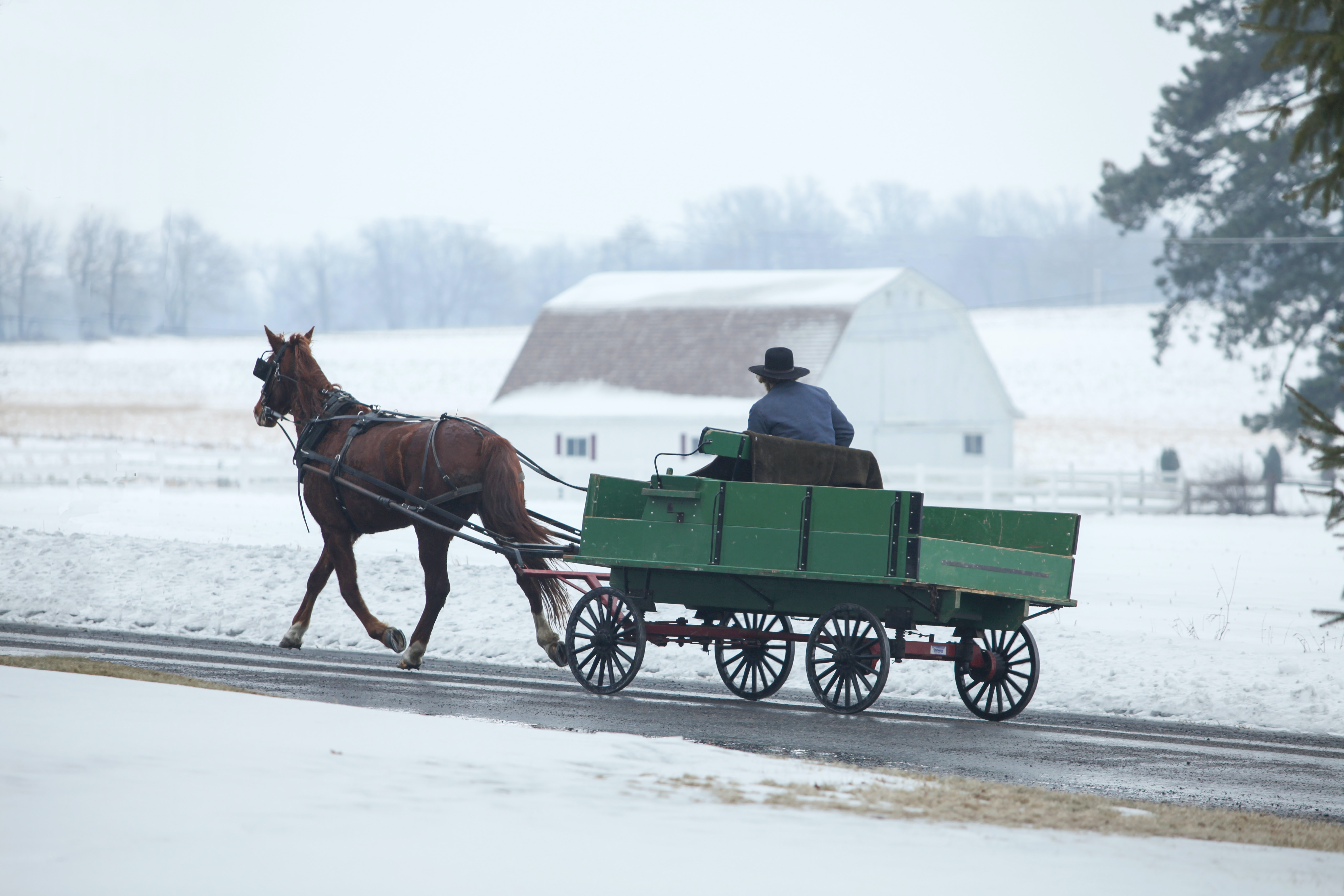 man riding horse carriage on road during snow season