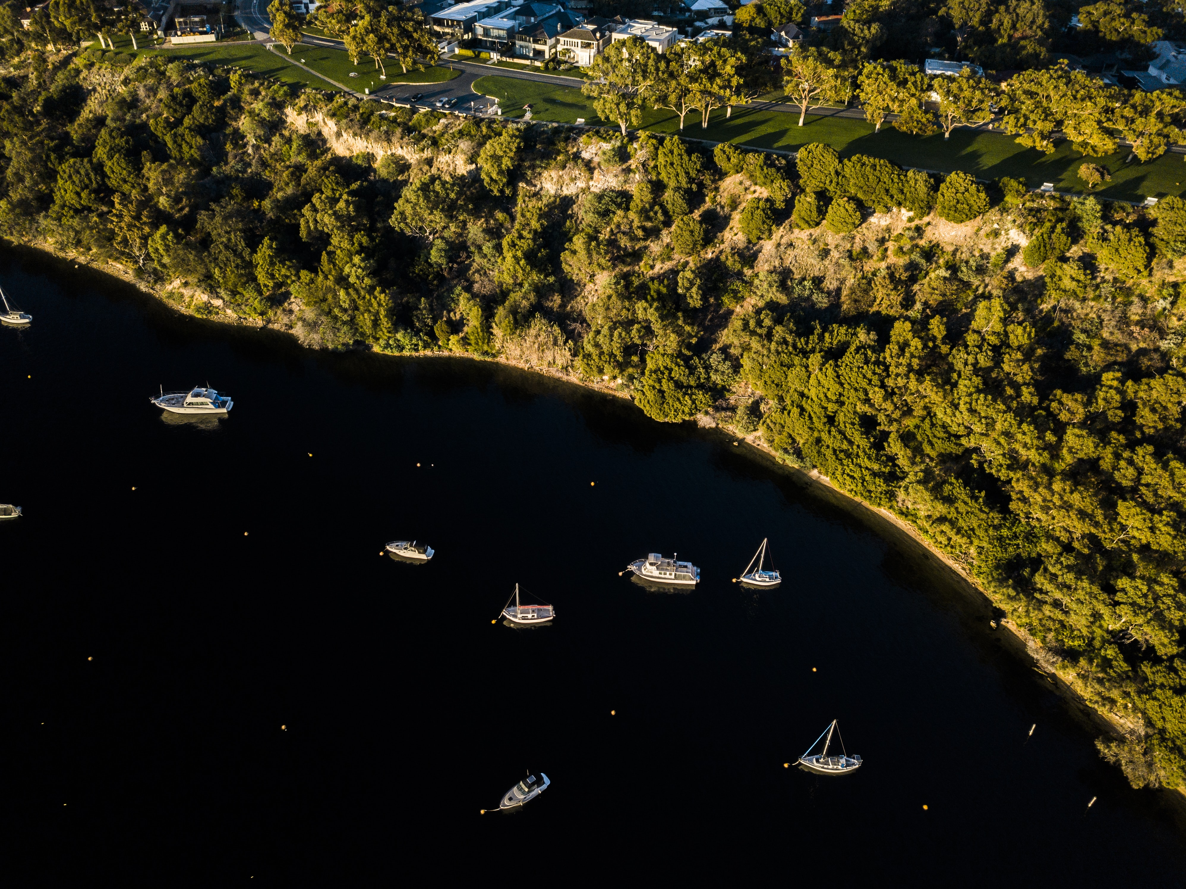 boats on body of water near trees and buildings miniature