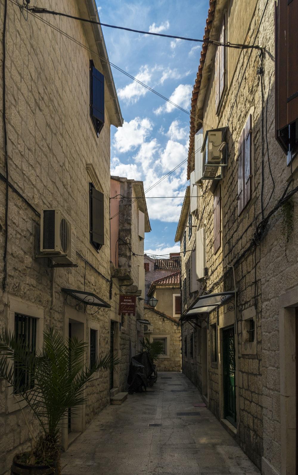 alleyway near houses