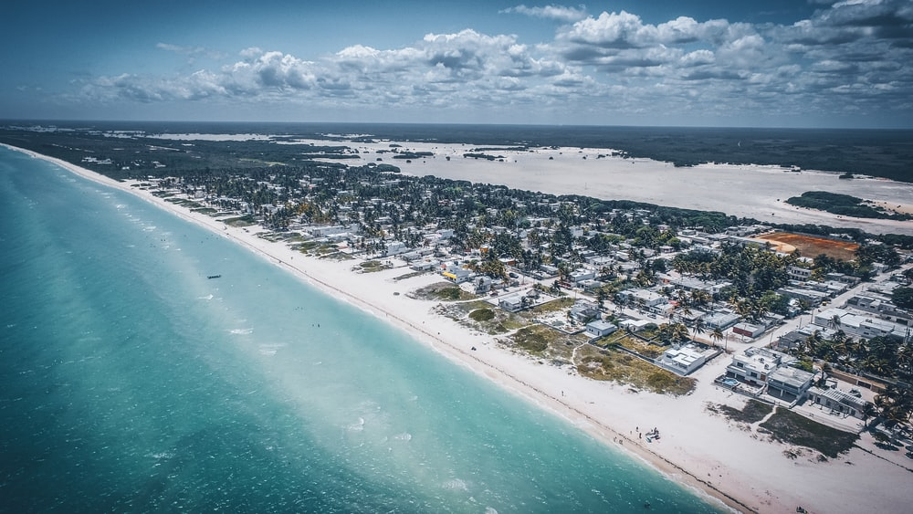 aerial view photo of white sand beach shoreline