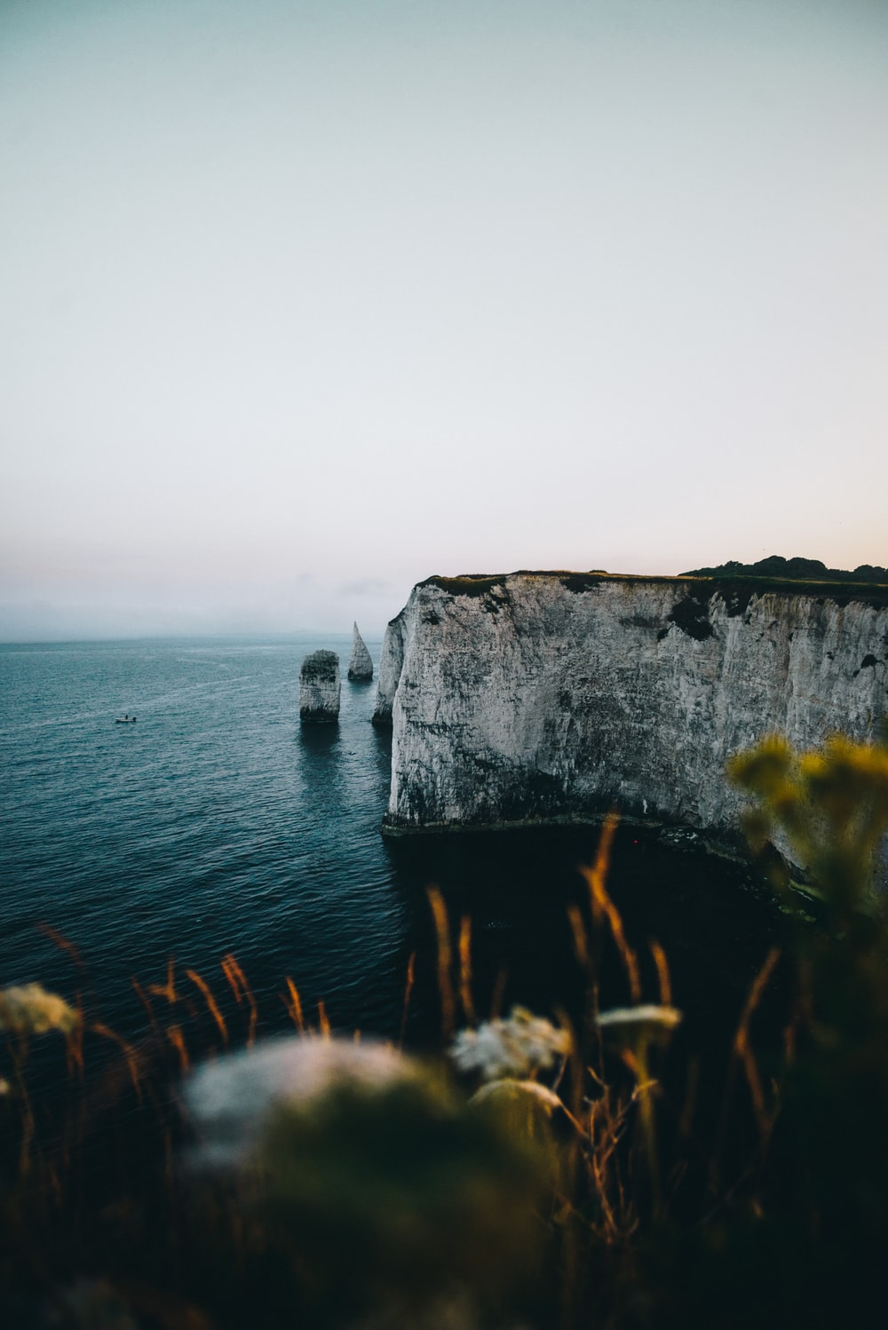 selective focus photography of a cliff