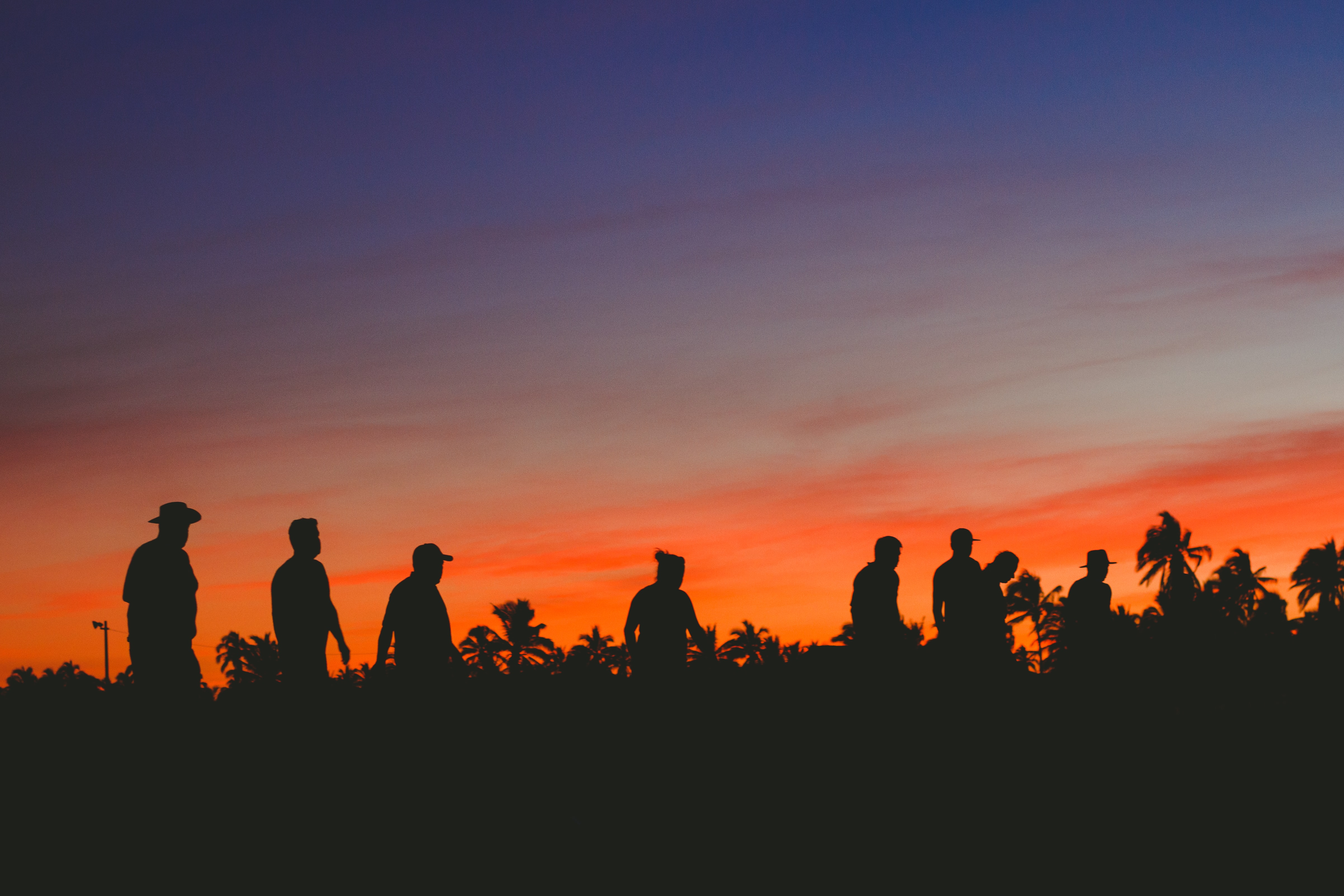 silhouette of people on the field during golden hour