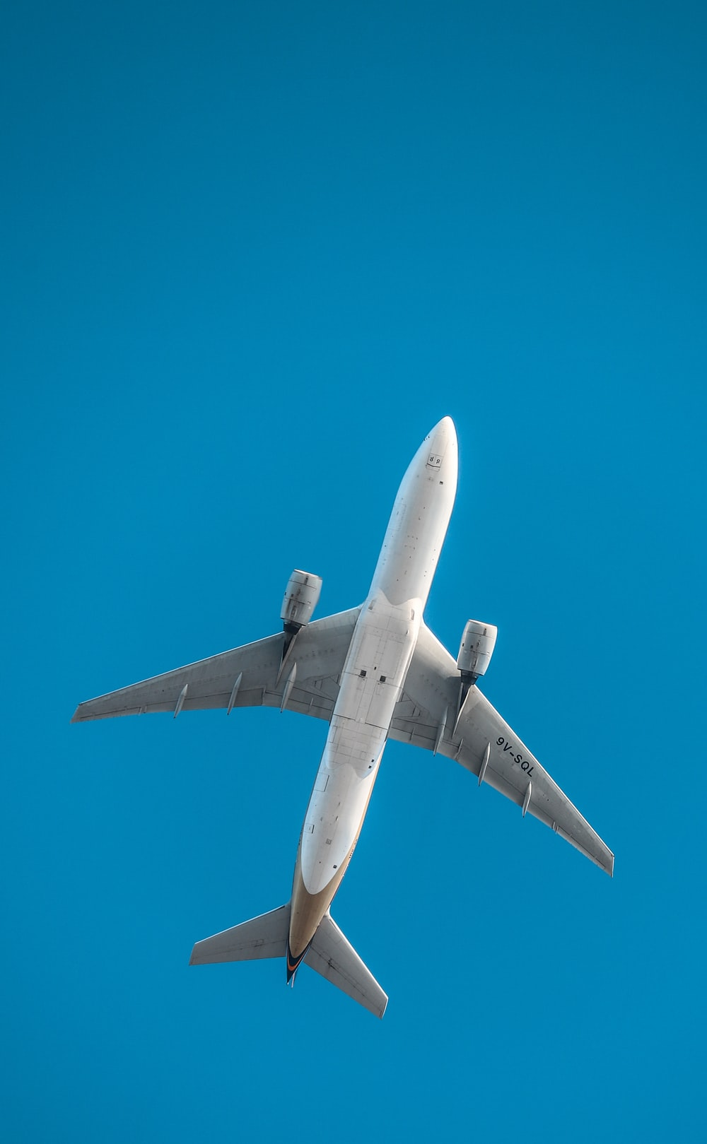 white and gray plane